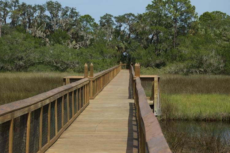 forst mose state park boardwalk